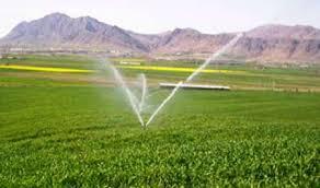 تجهیز بیش از هشت هزارهکتار از مزارع مهاباد به آبیاری تحت فشار